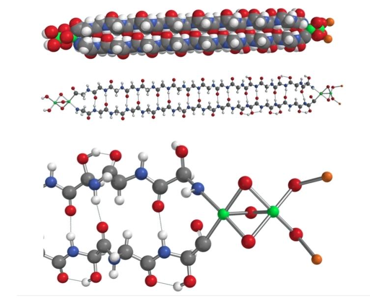 Figura 7 Modelo de la molécula de hemolitina 2320 después de la minimización de energía MMFF. Arriba: en modo de relleno de espacio; Centro: bola y palo; Abajo: vista ampliada de hierro, terminación de oxígeno y litio. Blanco = H; naranja = Li; gris = C; azul = N; rojo = O y verde = Fe. Los enlaces de hidrógeno se muestran mediante líneas punteadas. Crédito Harvard