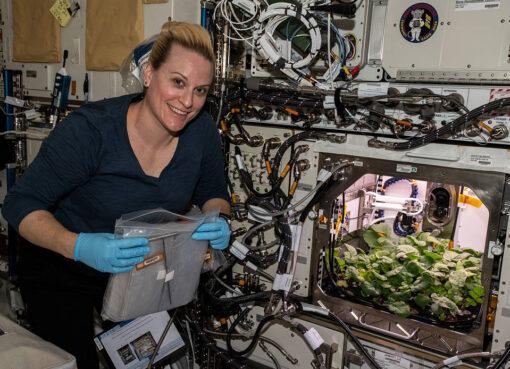 Astronauta Kate Rubins - NASA